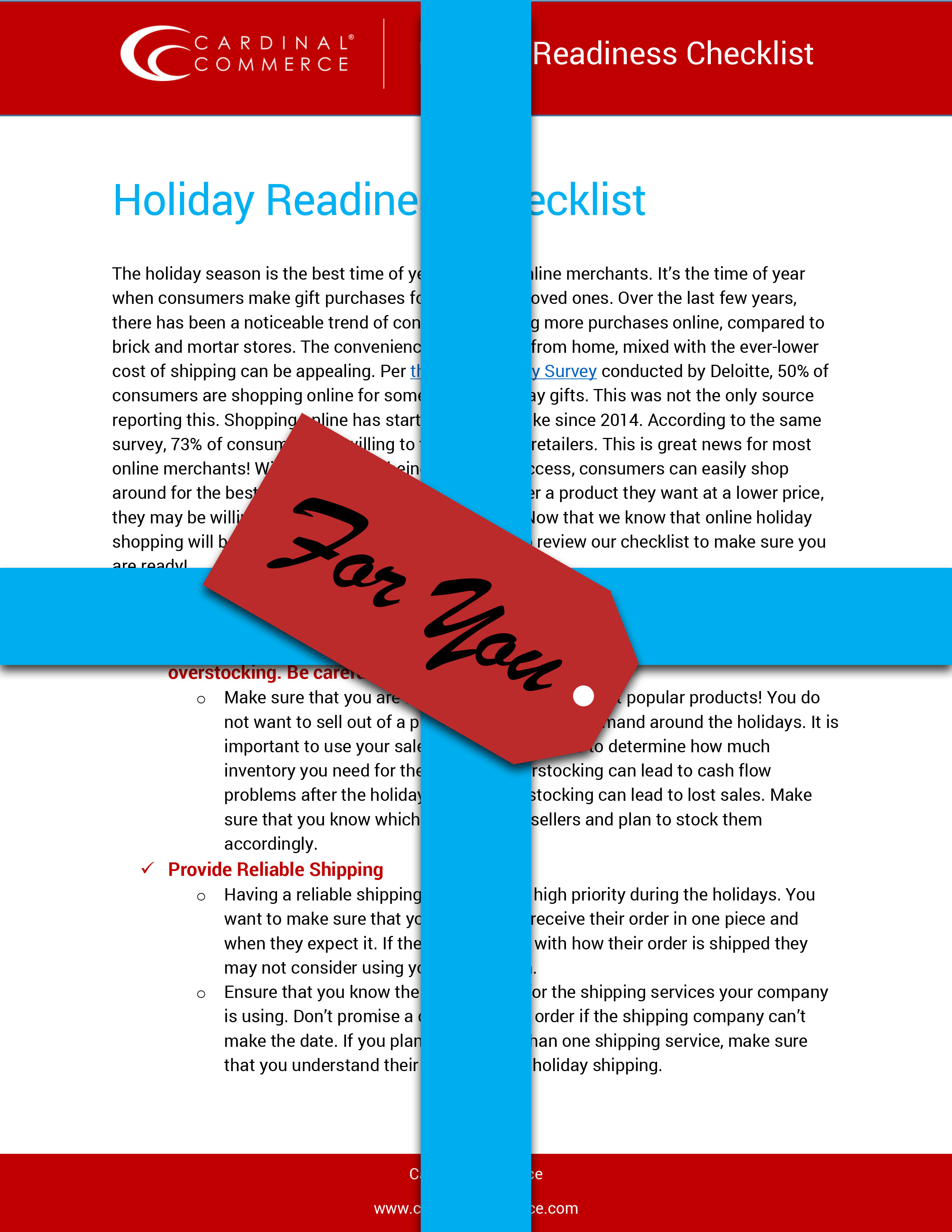 eCommerce Holiday Planning Checklist Cover
