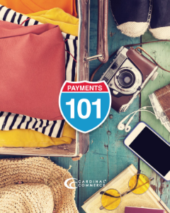 Payments 101 Guide